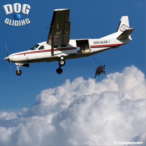 DOG GLIDING07