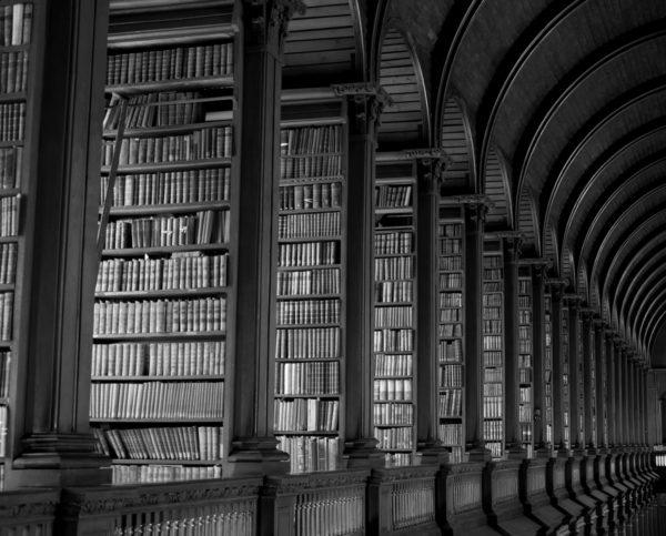 BRAIN 20 library