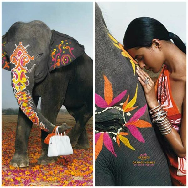 Decorated-Indian-Elephants-Hermes-Ad-Campaign