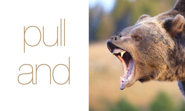 pull and bear, brandpowder