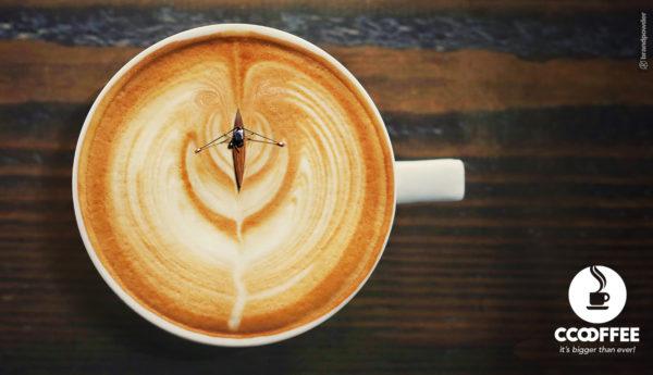 coffee, brandpwoder